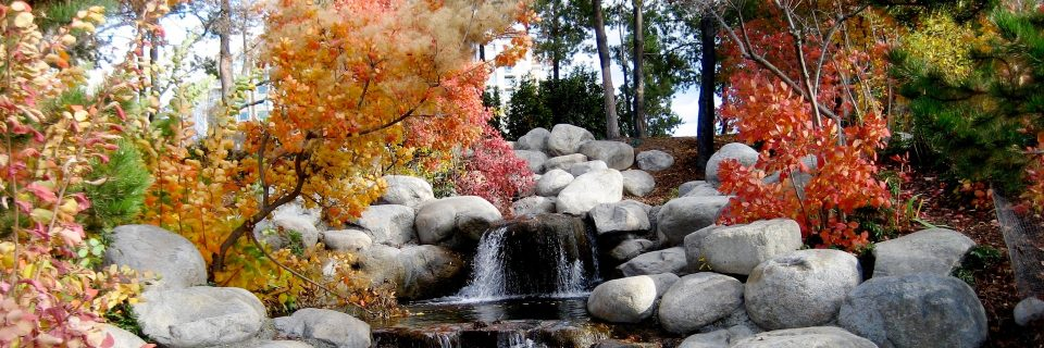 We provide landscaping services in your area